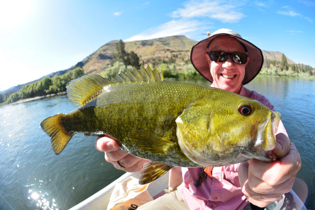 Home little creek outfitters guide for Bass fishing oregon