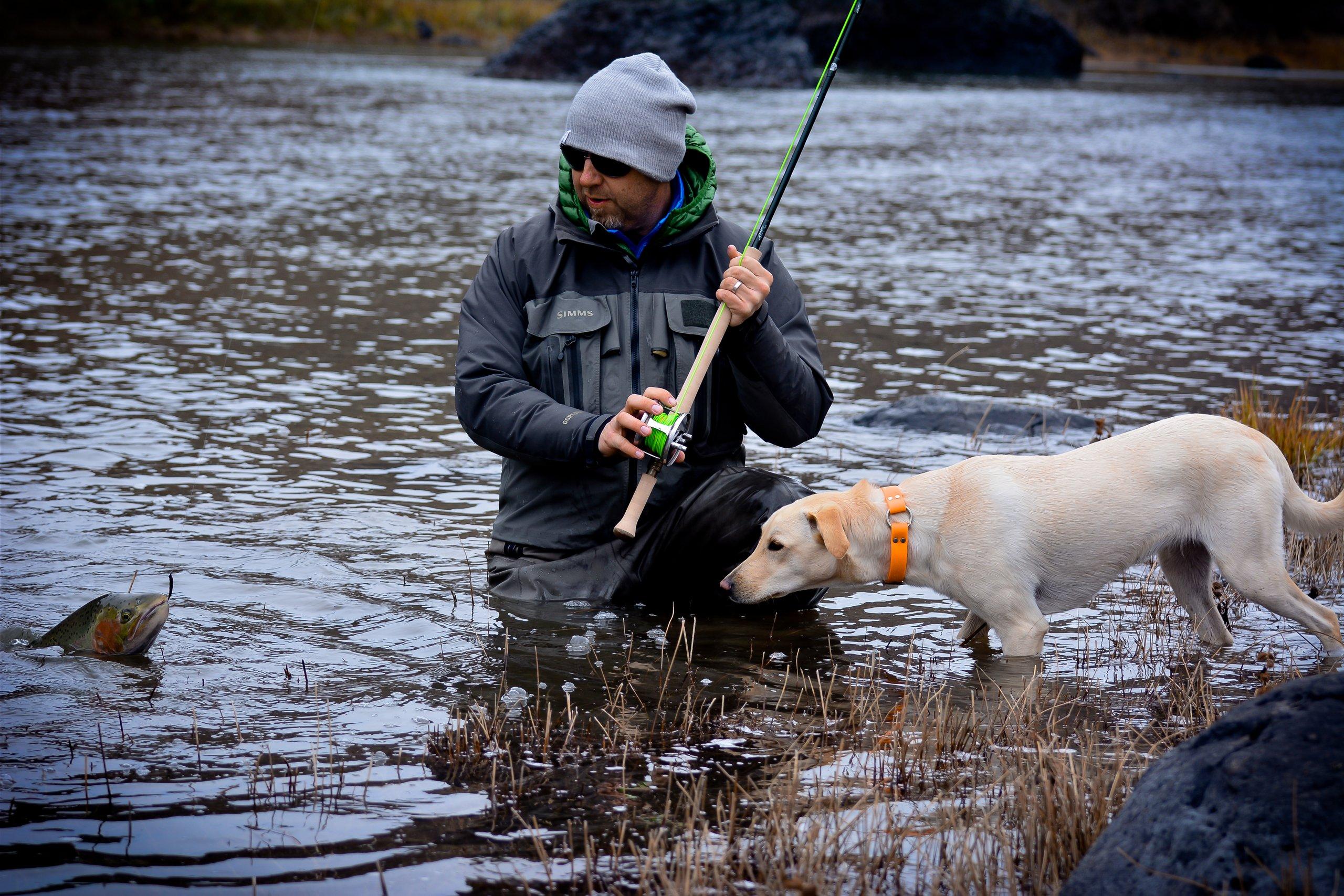 John day river steelhead fishing trip little creek for Fishing trips oregon